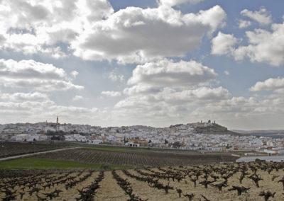 Vista general de Aguilar
