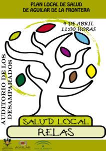 Plan Local de Salud  1